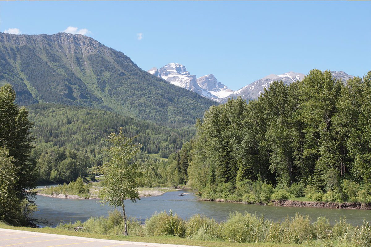 A view of the banks of the Elk River in Fernie, BC with lush green trees nestled at the river's edge and carpeting the steep slopes of the Rocky Mountains on a bright summer's day.