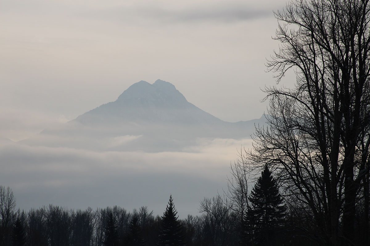 A view of the summit of the Rocky Mountains obscured by a haze of clouds with the black outlines of barren trees in the foreground on an overcast day in Fernie, British Columbia.