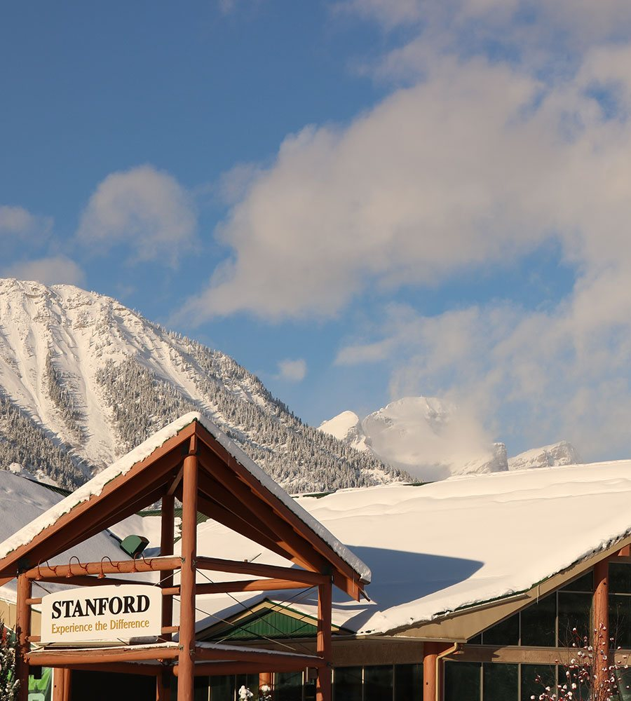 A view of the  gabled snow covered rooftops of the portico and the Stanford Fernie Resort on a sunny day with the trees and the pristine white slopes of the Rocky Mountains.